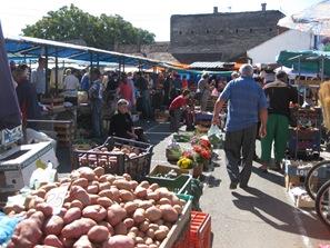 Monday, July 20, 2009 Village and to Bijeljina 174