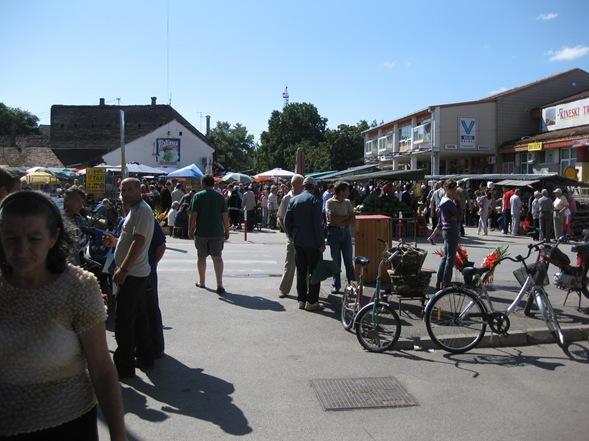 Monday, July 20, 2009 Village and to Bijeljina 196