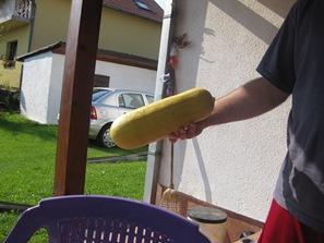 July 06 2008 Bijeljina 071