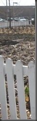 City Lot indicated with White Picket Fence
