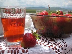 July 8 2009 Bijeljina to Mostar 111